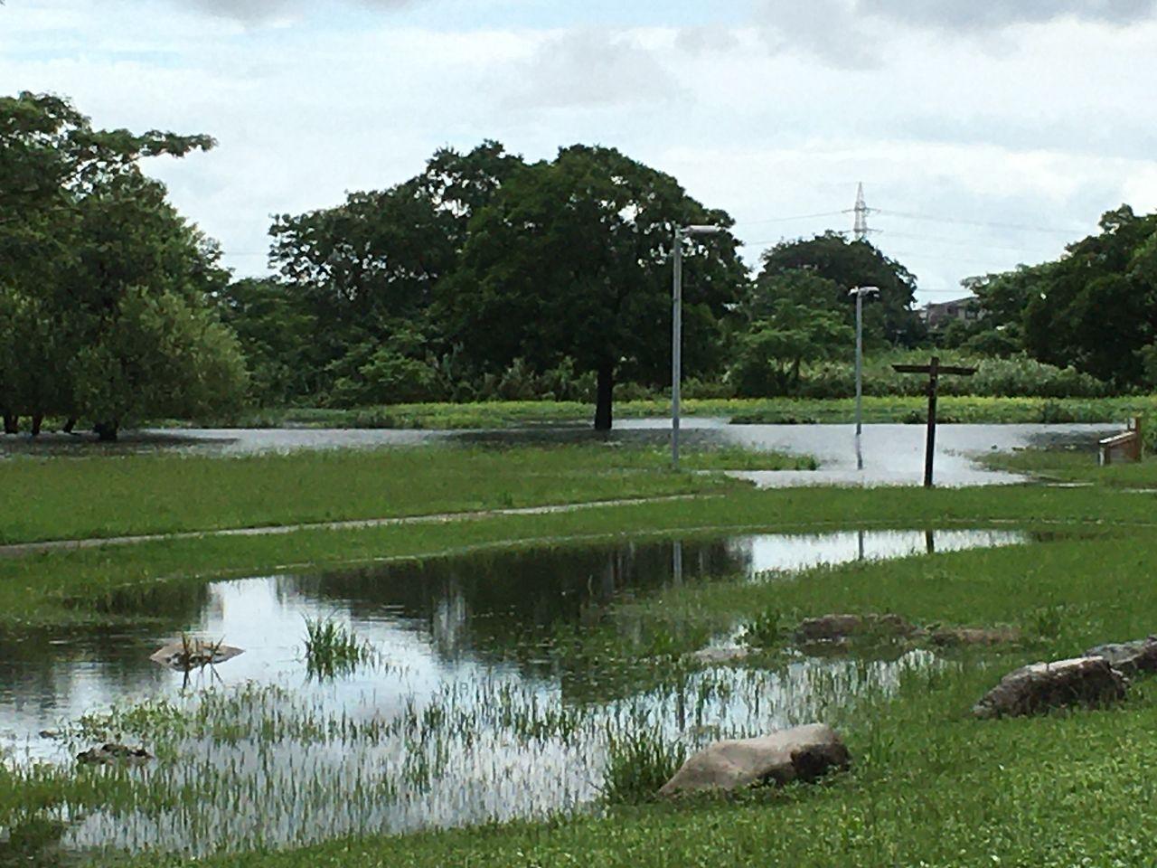 大雨で冠水した水前寺江津湖公園・広木地区