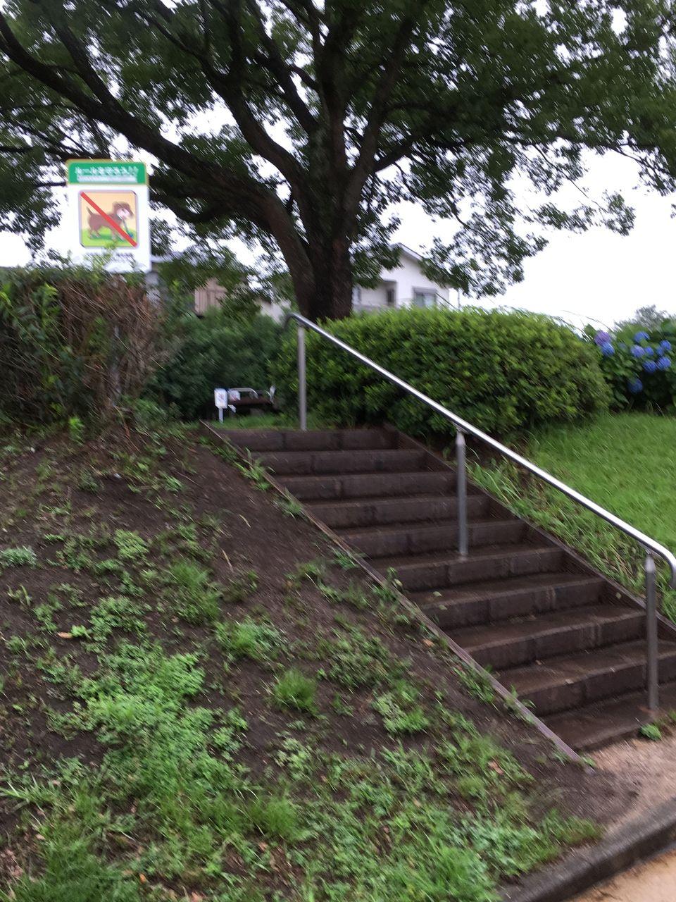 公園の高低差を感じさせる公園内にある階段部分