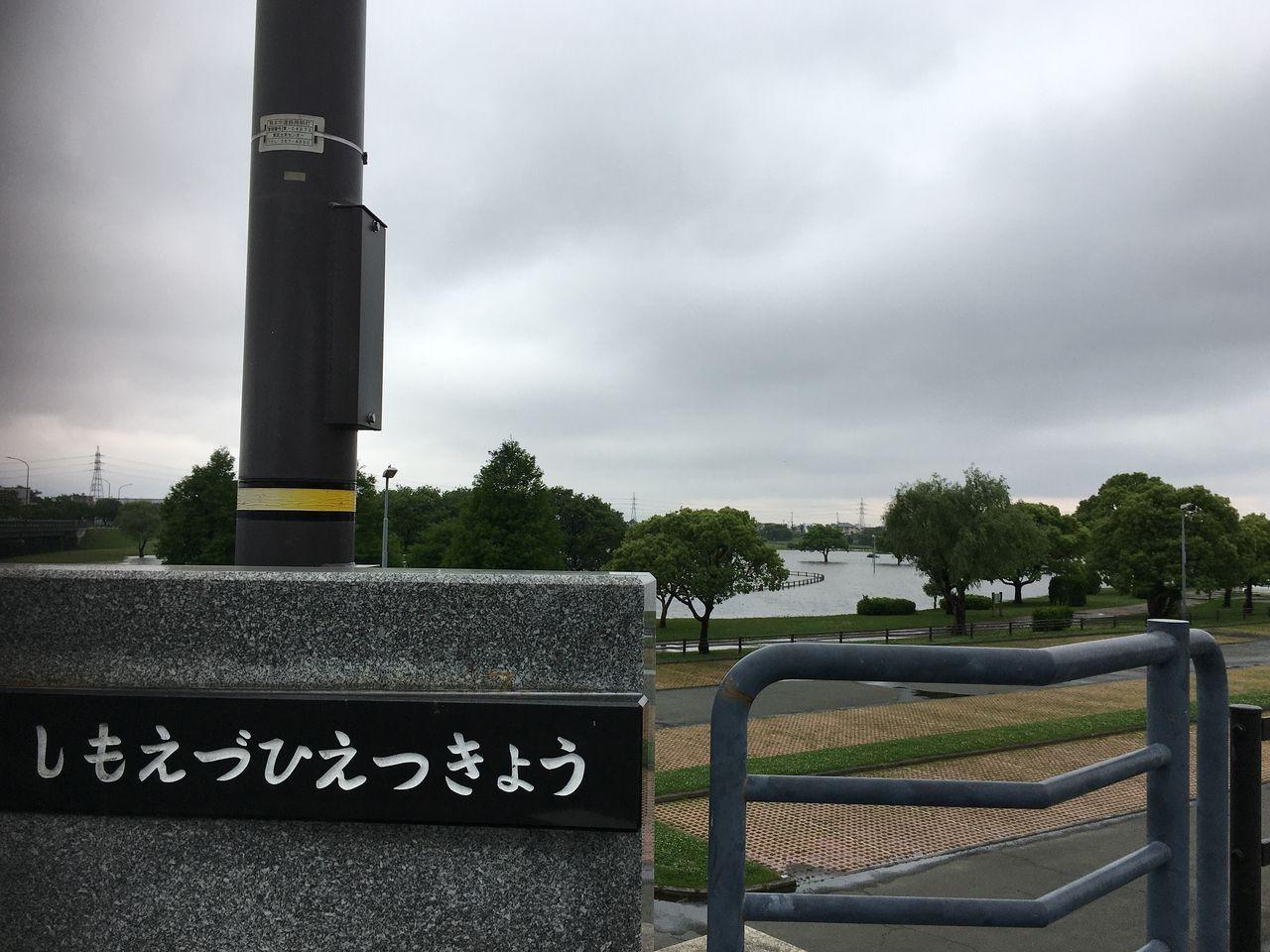 橋の上から見た熊本市水前寺江津湖公園・広木地区