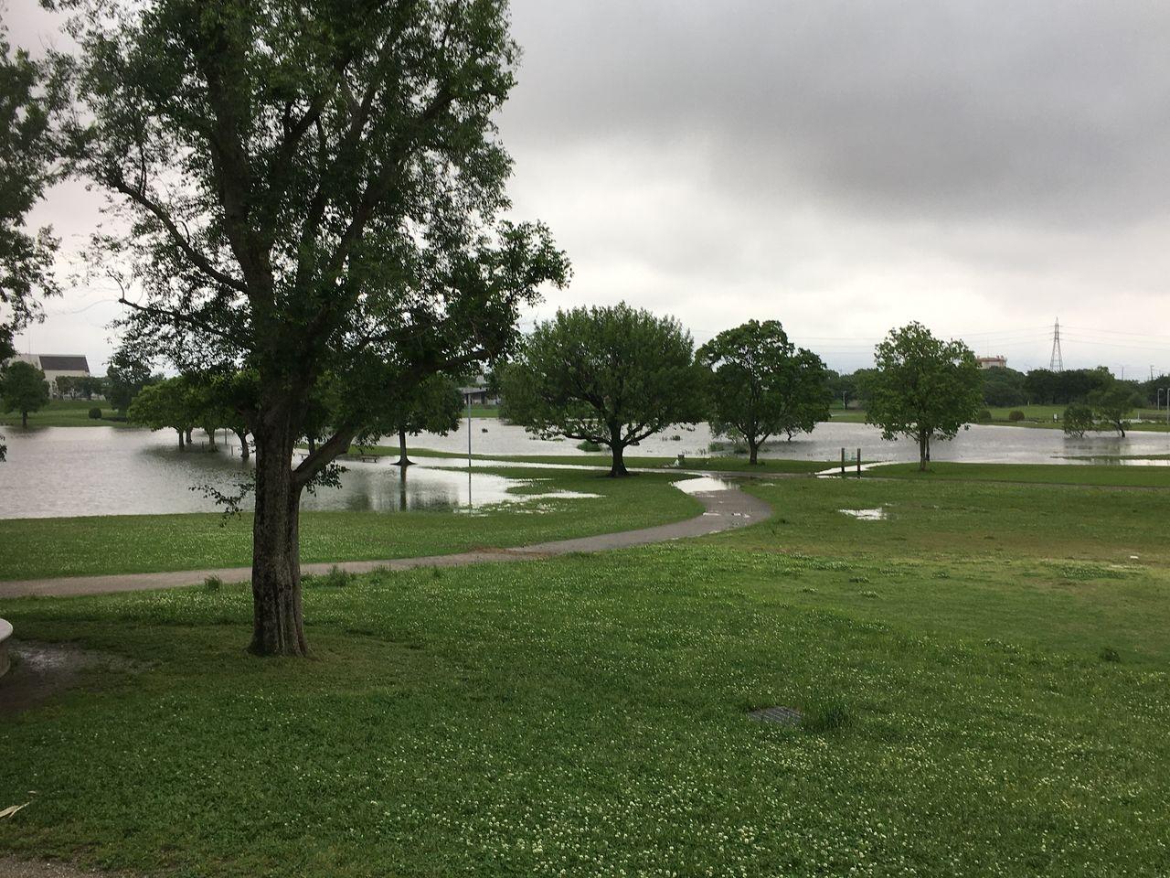 雨により冠水した遊水地区