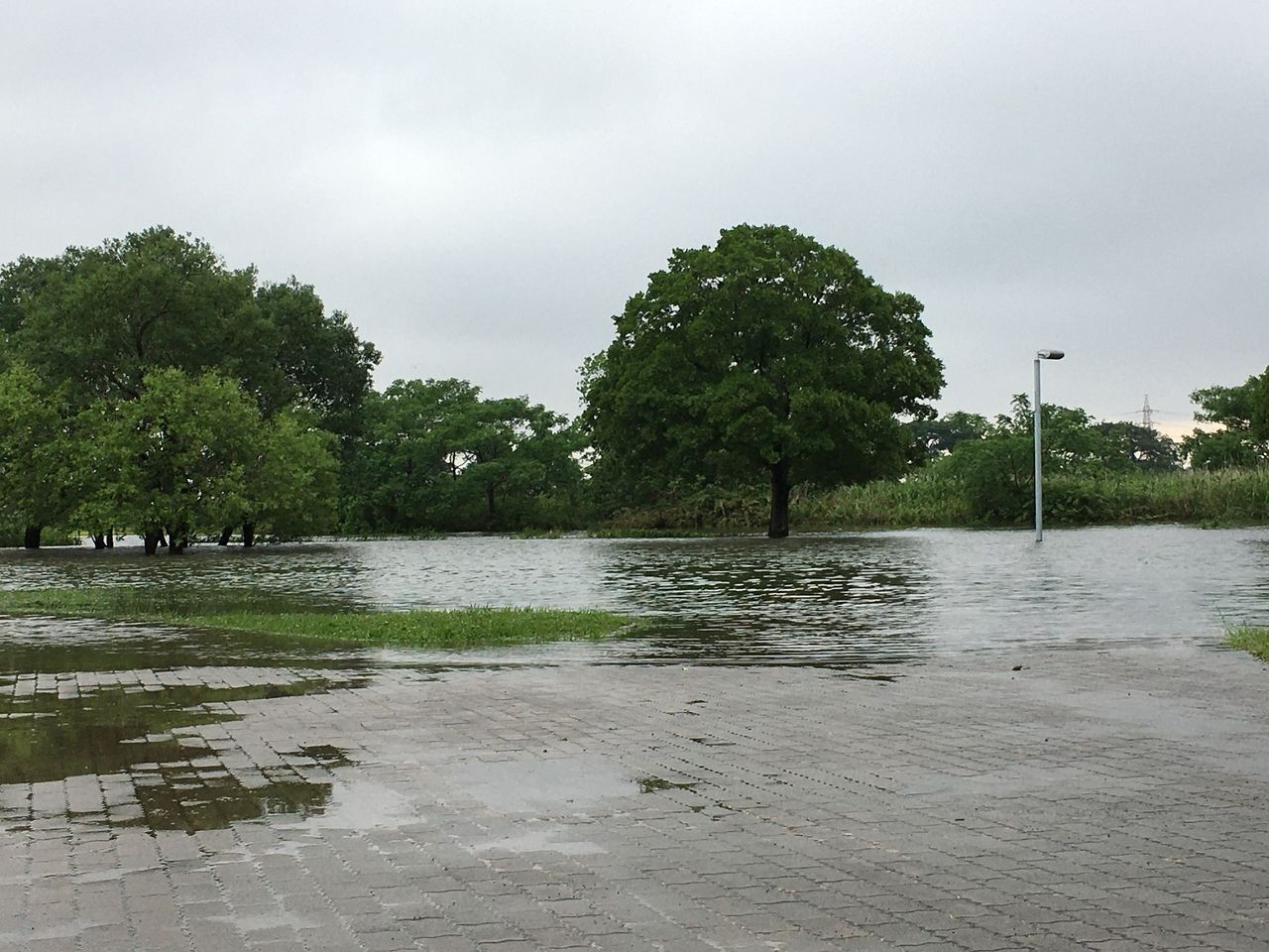 熊本市 水前寺江津湖公園・広木地区 今年も今回の雨で一部冠水