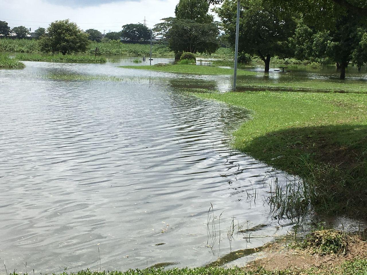 水没している公園の芝生帯