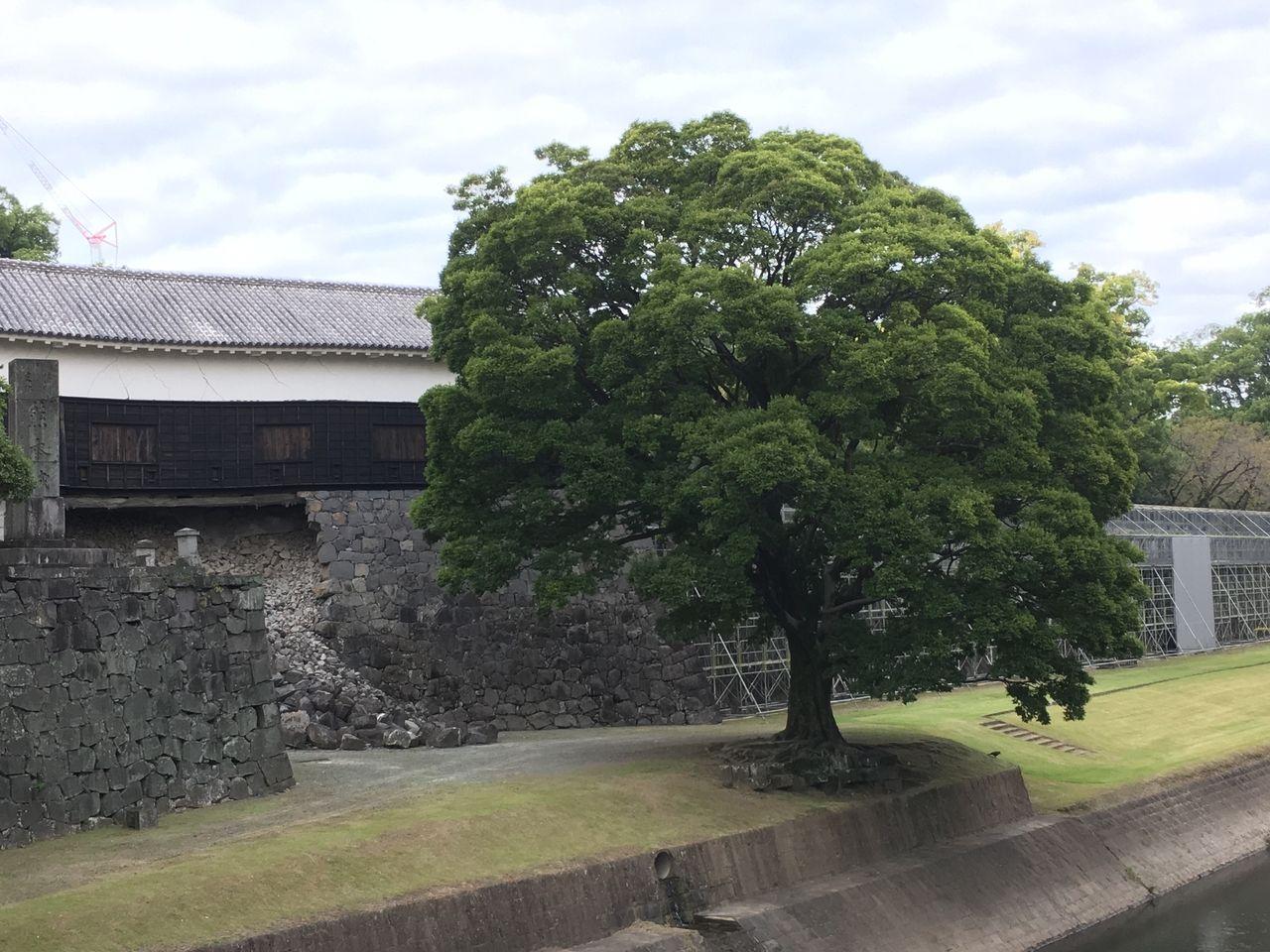 修復進む熊本城