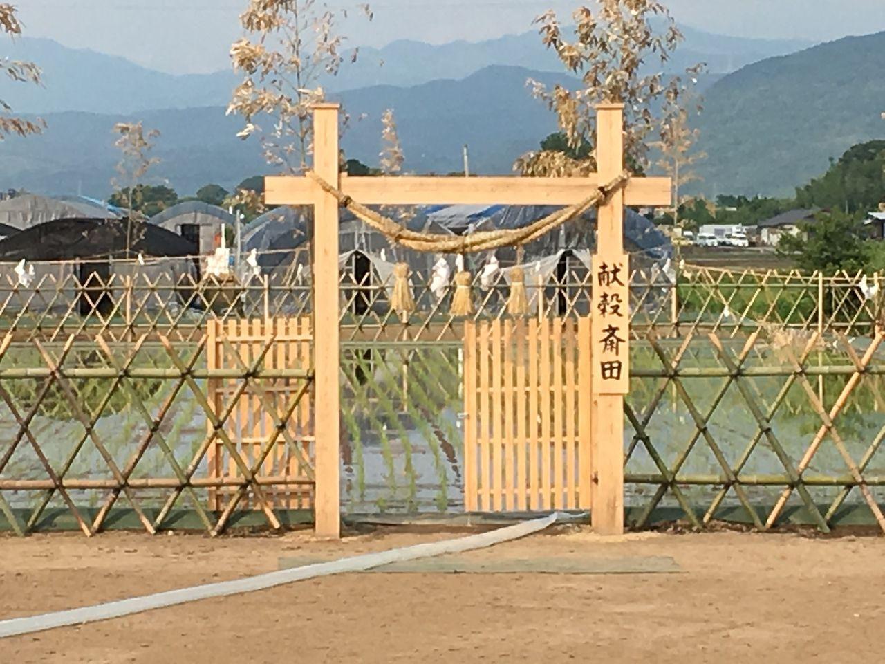 浮島神社の近隣にある献穀斎田