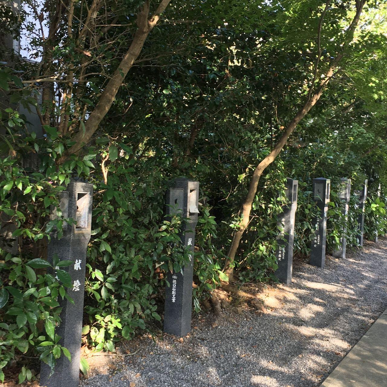 参道に献灯されている燈籠