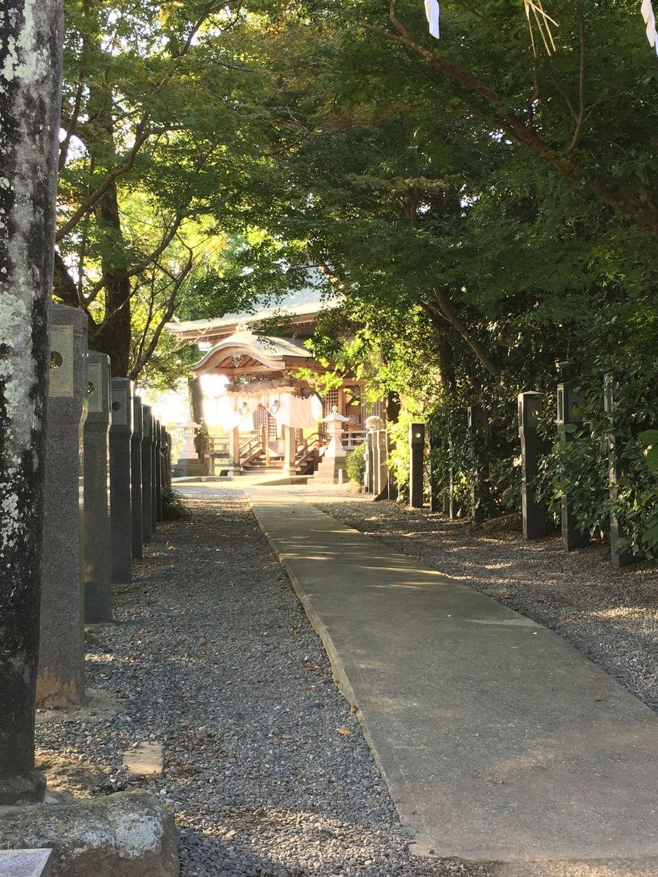 浮島熊野座神社Ⅲ