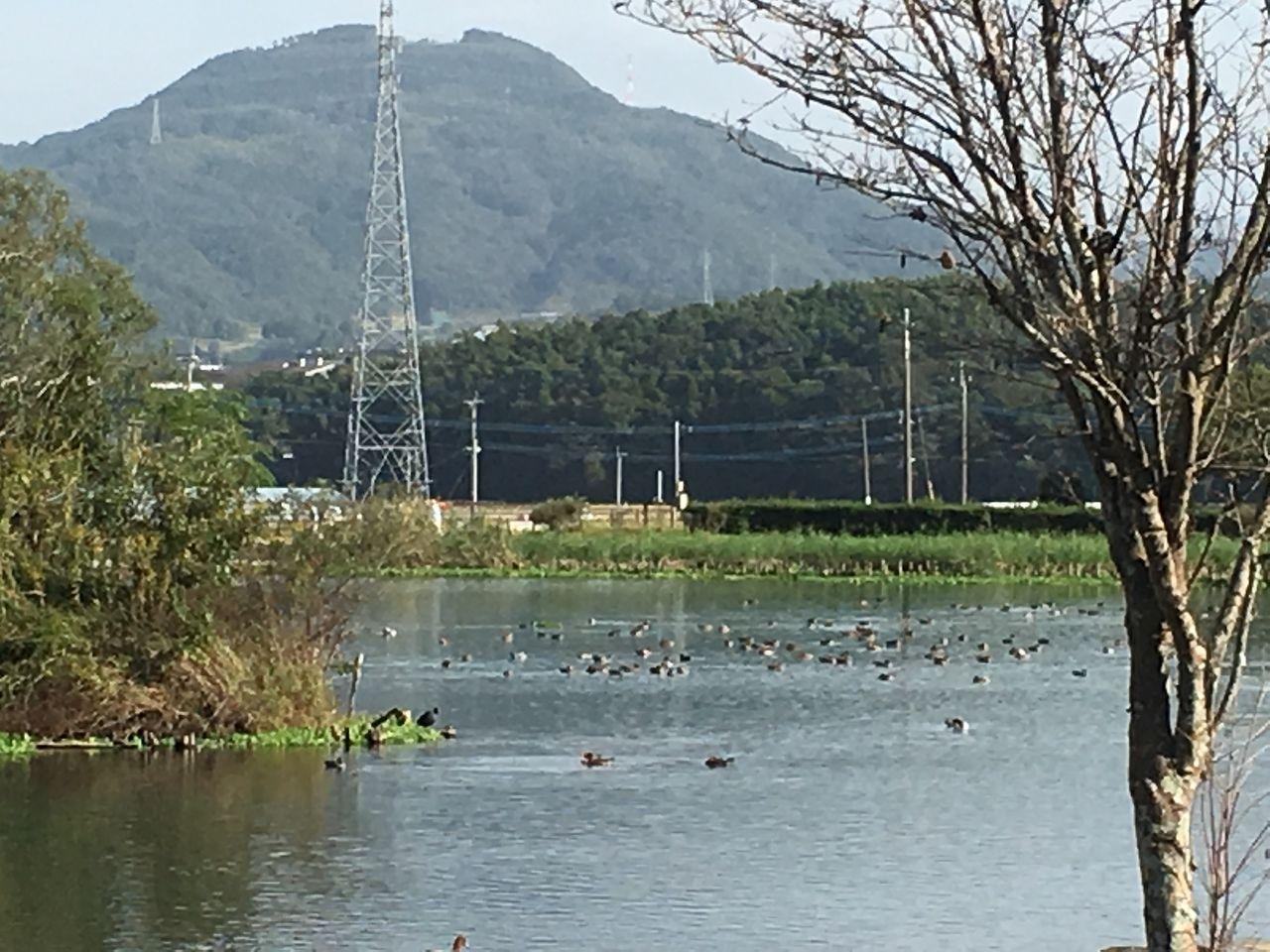 湧水には水鳥が遊び、自然の木立に囲まれた浮島周辺水辺公園で心穏やかな一時を過ごしてみませんか?リフレッシュできますよ。