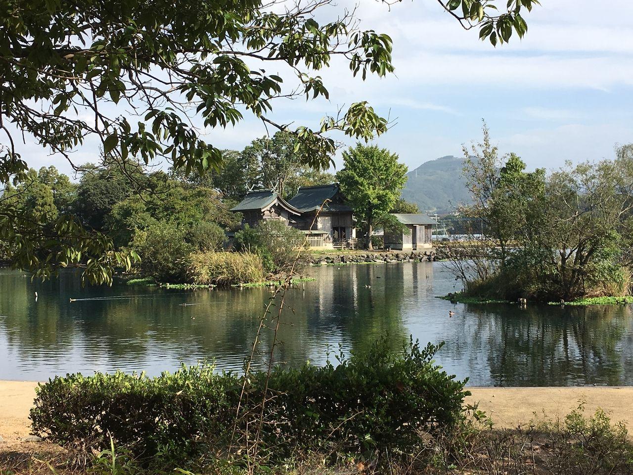 浮島周辺水辺公園より浮島神社や飯田山を望む、湧水には水鳥が遊ぶ