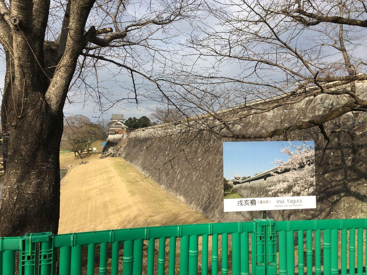 地震で壊れたままの戌亥櫓につづく長塀