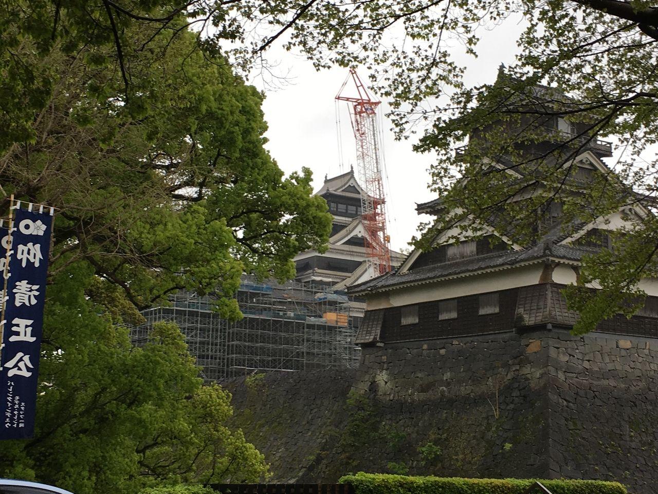 2020年.春の熊本城・新緑が萌えいでてきました