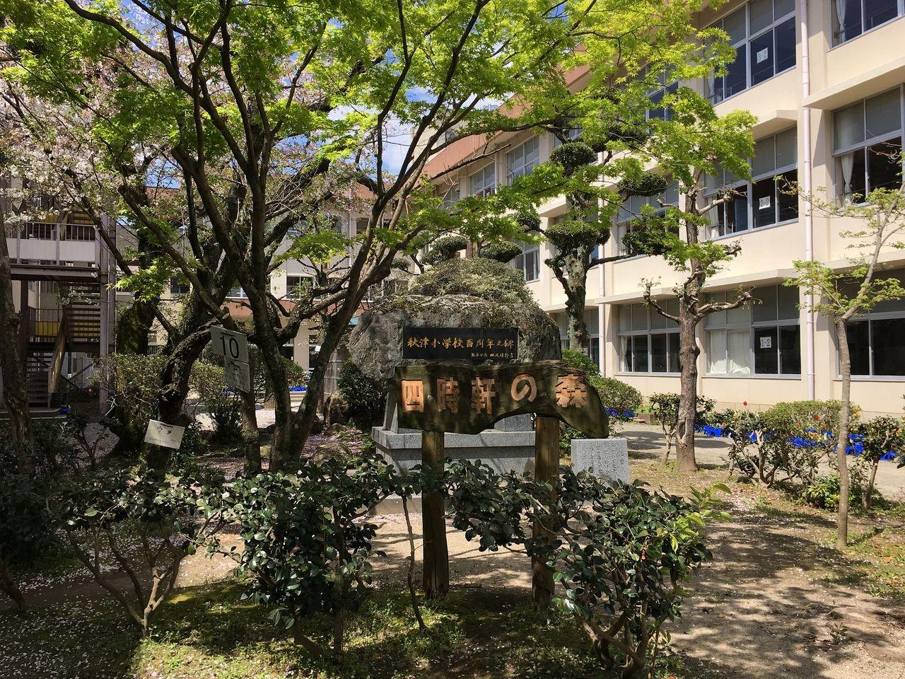 秋津小学校中庭にある四時軒の森