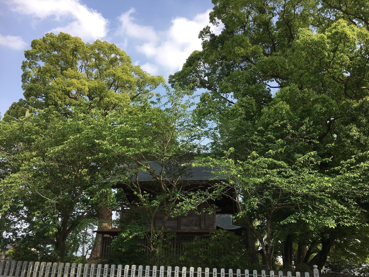 熊本市東区の沼山津神社の新緑の中に佇む本殿と玉垣