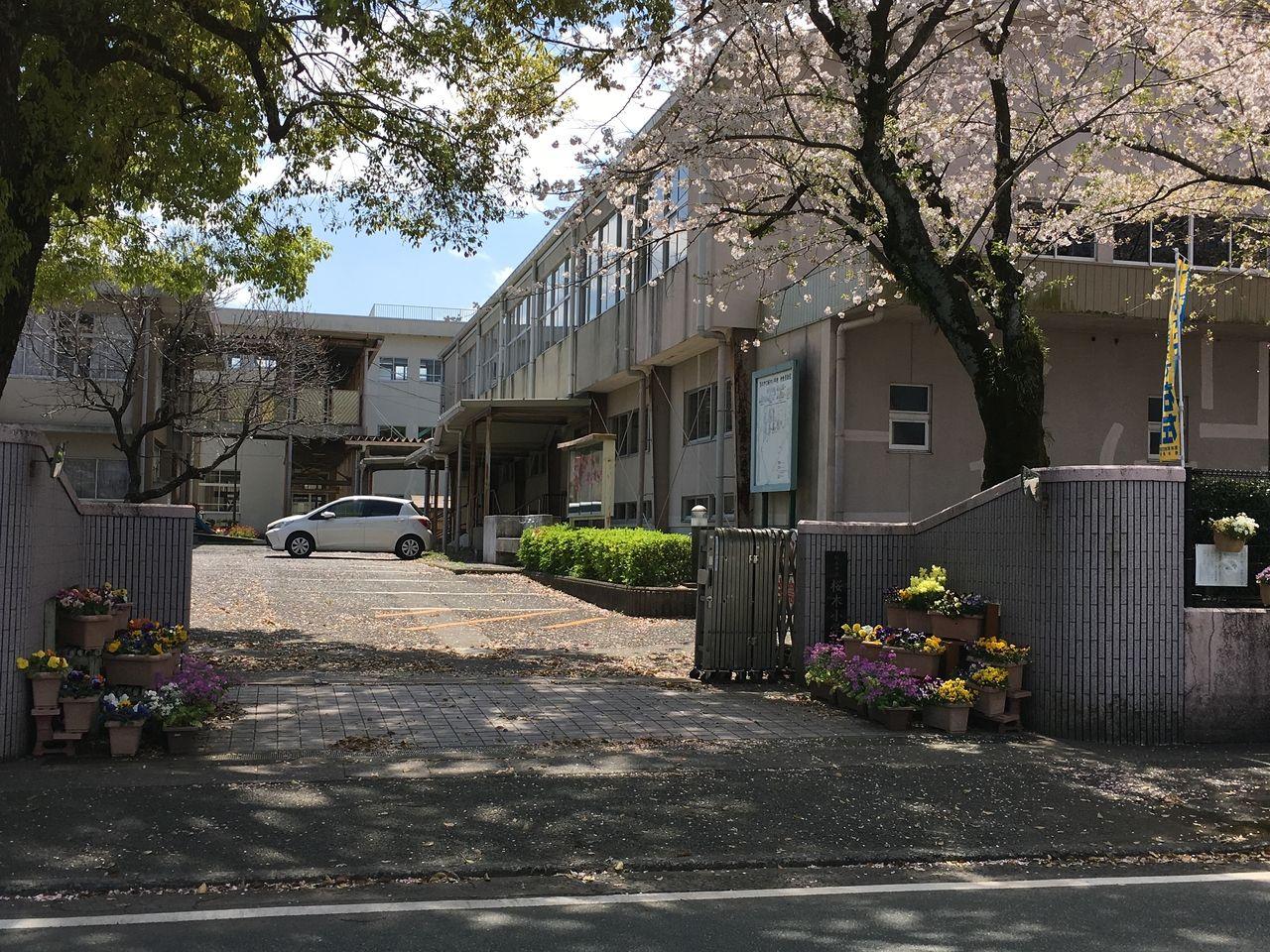 桜の花咲く熊本市立桜木小学校校門