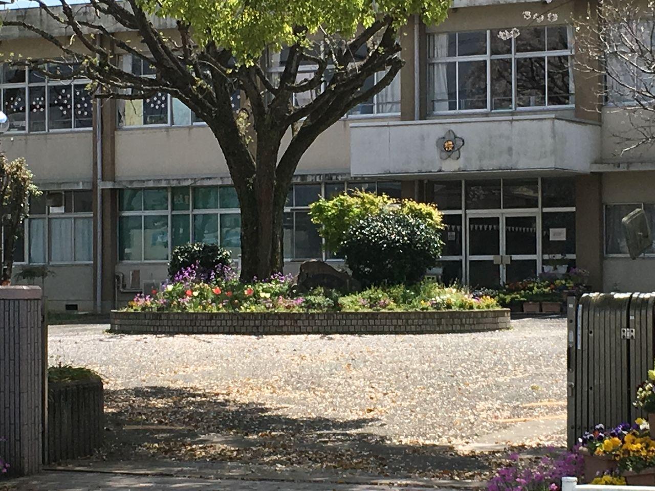 熊本市立桜木小学校校門の校舎入口